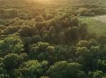 Land for Sale Decatur County Iowa-60