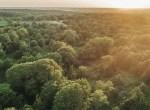 Land for Sale Decatur County Iowa-65