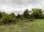 Land For Sale_Building Site_Dallas County Iowa_6 acres (11)