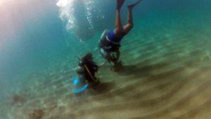 SCUBA Divers at Anse Chastanet Marine Park, SCUBA Saint Lucia