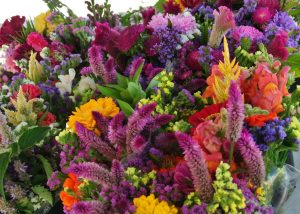 Summer flowers bouquets at St. Jacobs Farmers Market -rich colours, sweet smells and variety of shapes!