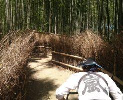 嵐山の人力車 竹林を行く