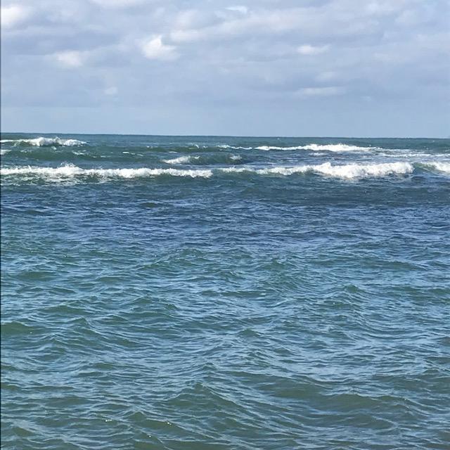 【初冬】岩礁帯サーフサラシ撃ち冬のデイシーバス釣行