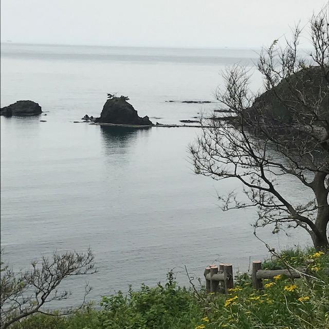 海の近くのオートキャンプ場でムササビタープでソロデイキャンプ
