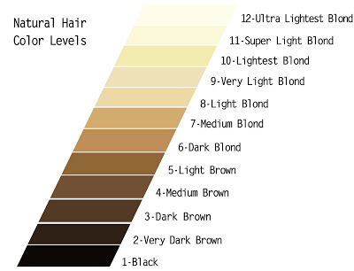july-natural-hair-color-levels-101
