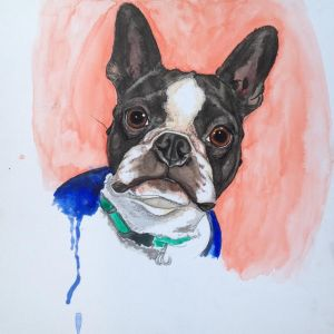 Painting Pet Portraits_Teens