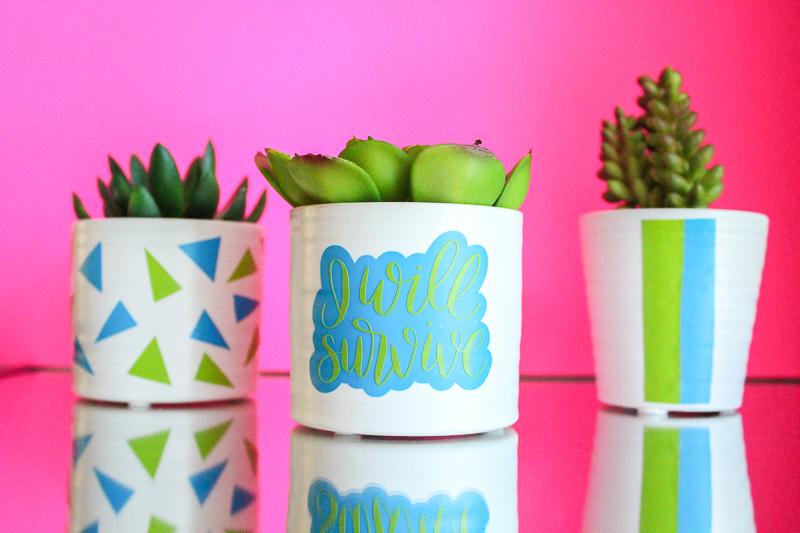 I Will Survive Vinyl Succulent Vase