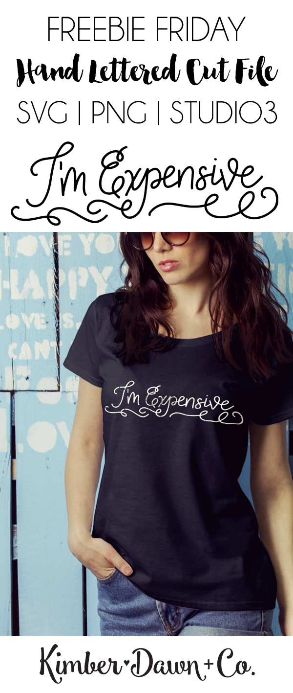 Hand-Lettered I'm Expensive Free SVG Cut File. This week's hand lettered design is perfect for a DIY T-Shirt, Mug, or Baby Tee!