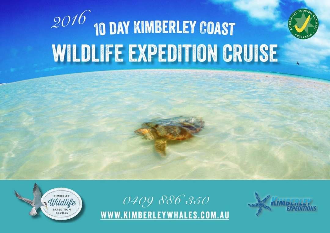 2016 Kimberley Wildlife Expedition Cruises' brochure