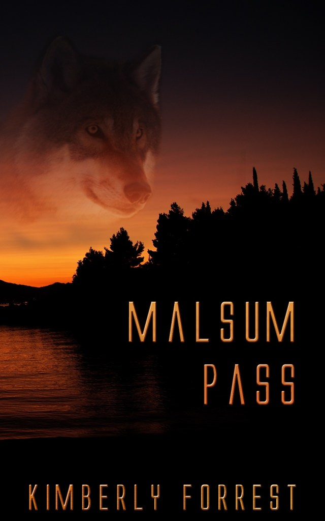 Book Cover: Malsum Pass