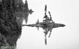 photograph, landscape, water, lake, fog, trees, nature, reflection, washington,