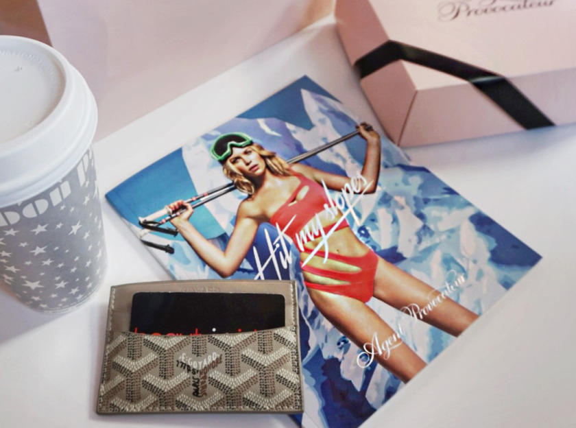 agent provocateur winter 2015 gray goyard card case wallet 1