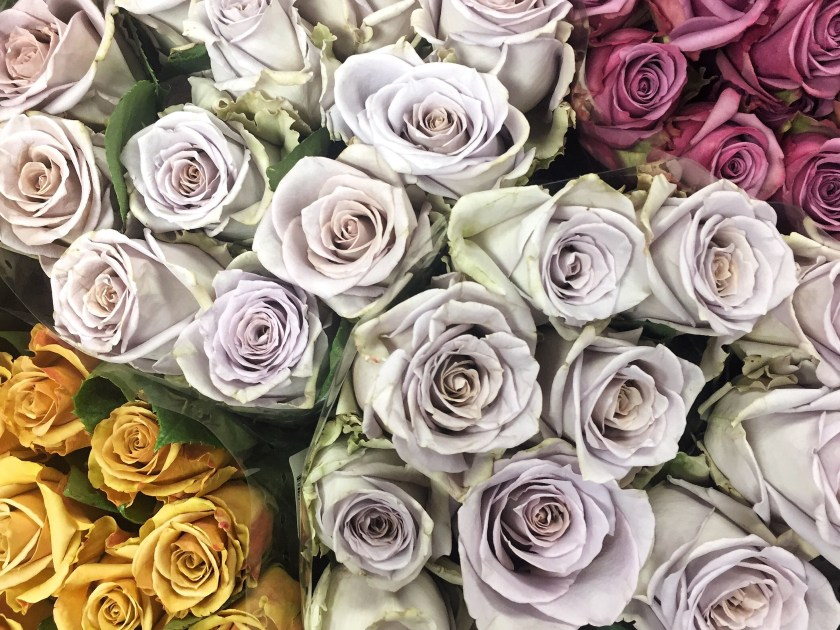 nyc flower market roses grey lavender lilac