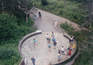 aerial view of a circular paved area mostly surrounded by trees with people wandering about