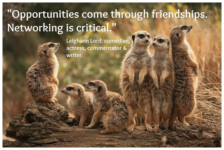 meerkat_family with text #2