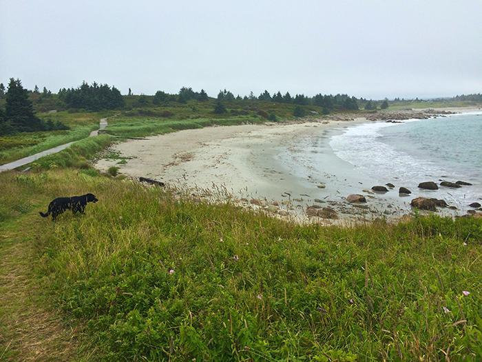 Crystal Crescent Beach - Kim D'Eon