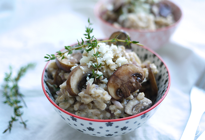 kd-oats-2