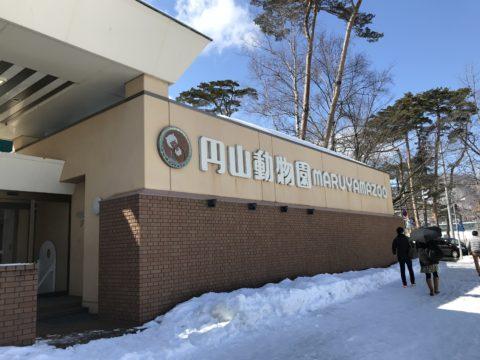 円山動物園 駐車場の混雑状況は?すぐ入れる時間帯や周辺駐車場は?