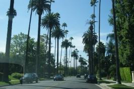 Typische straat in Beverly Hills