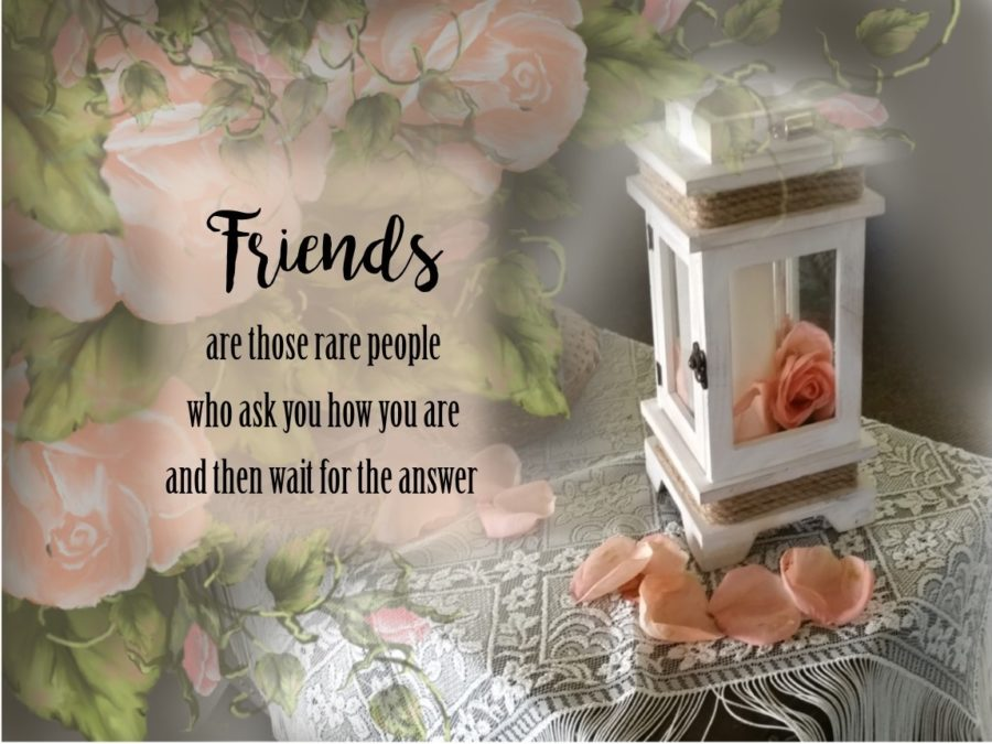 lamp on trunk roses friends listen meme