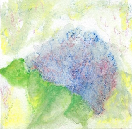 too much water on hydrangea painting