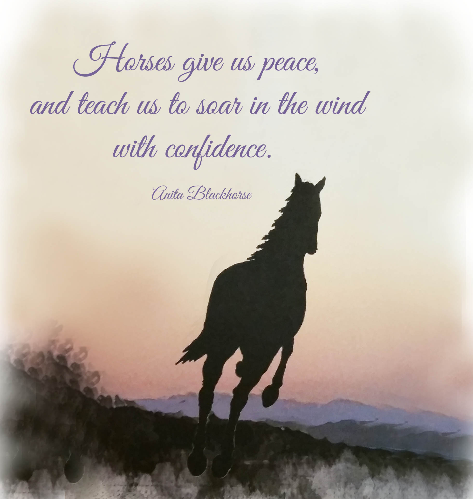 Horse and Sunset horses bring us peace anita quote