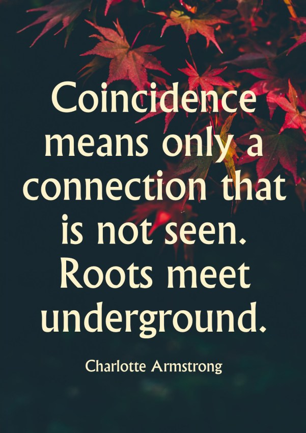 Coincidence quote by Charlotte Armstrong on fall leaves image