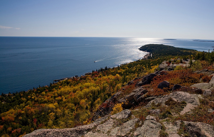 Views from Mount Gorham, Acadia National Park.