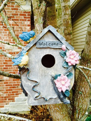Bird house home
