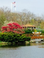 park tree gazebo bridge
