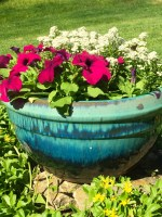 flowers teal round