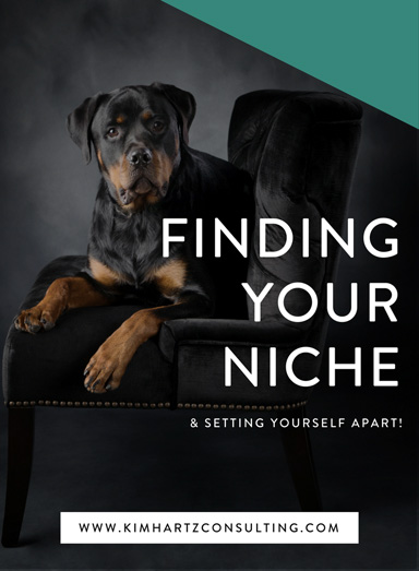 The Importance of Finding your Niche