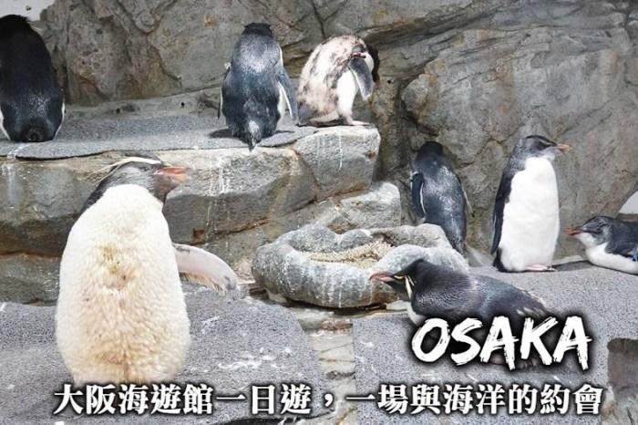 大阪海遊館-交通方式、優惠門票,企鵝、魟魚互動體驗,在大阪海遊館展開一場與海洋的約會!