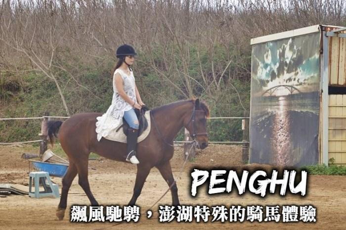 澎湖騎馬體驗-登上馬背來驫風馬場馳騁、體驗澎湖最獨特有趣的戶外活動!