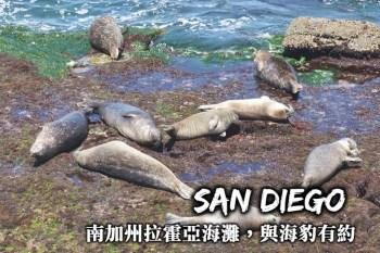 聖地牙哥景點-拉霍亞海灘(La Jolla cove)散步,在聖地牙哥與成群可愛海豹有約!
