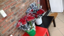 Onze mooie roosjes!