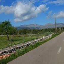 Serra Tramuntana op de achtergrond