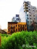 Highline_new