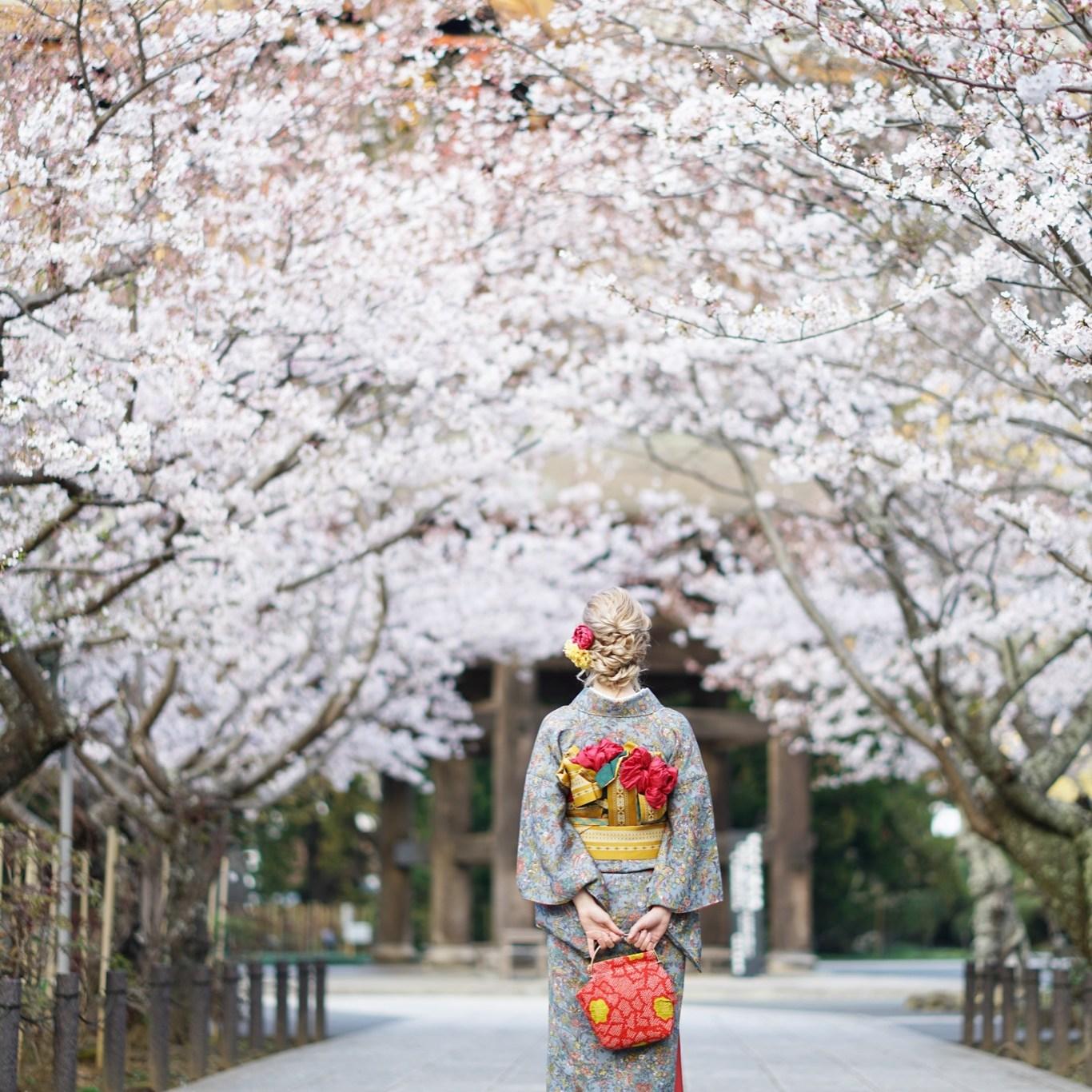 鎌倉着物レンタル花のん 春の着物