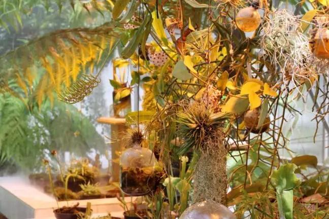 Testen met planten in de galerie