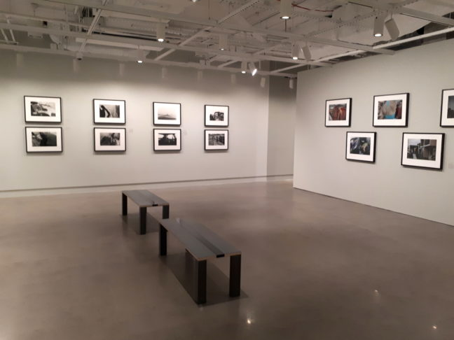 International Center for Photography in New York