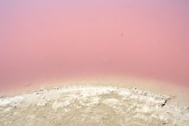 De roze meren van Las Coloradas