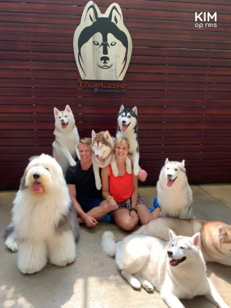 Op de foto met de honden van TrueLove @ Neverland in Bangkok.