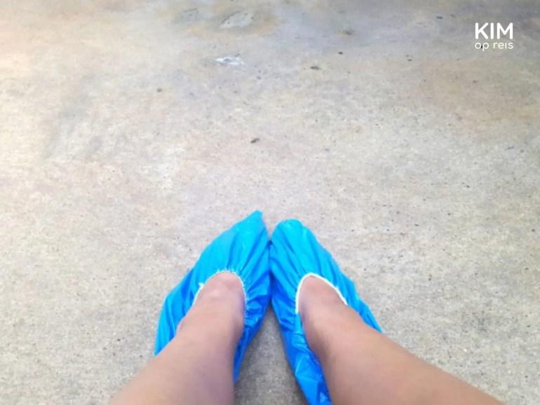 Plastic schoenbeschermers aan voor de hygiëne.