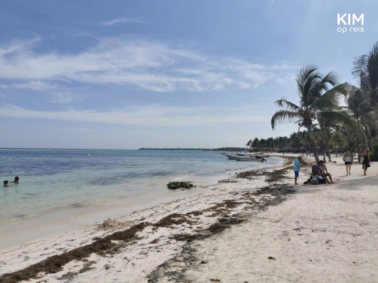 Akumal Beach in Mexico