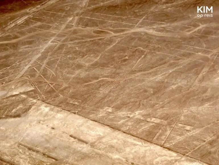 Vlucht over Nazcalijnen