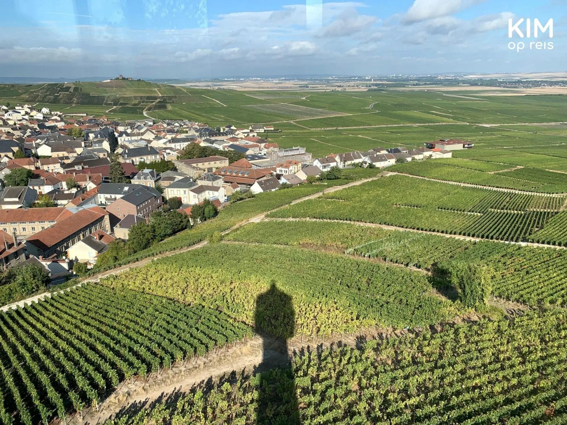 Uitzicht Le Phare Verzenay: foto gemaakt door het raam van de vuurtoren met de schaduw van de vuurtoren die over de wijngaarden ligt