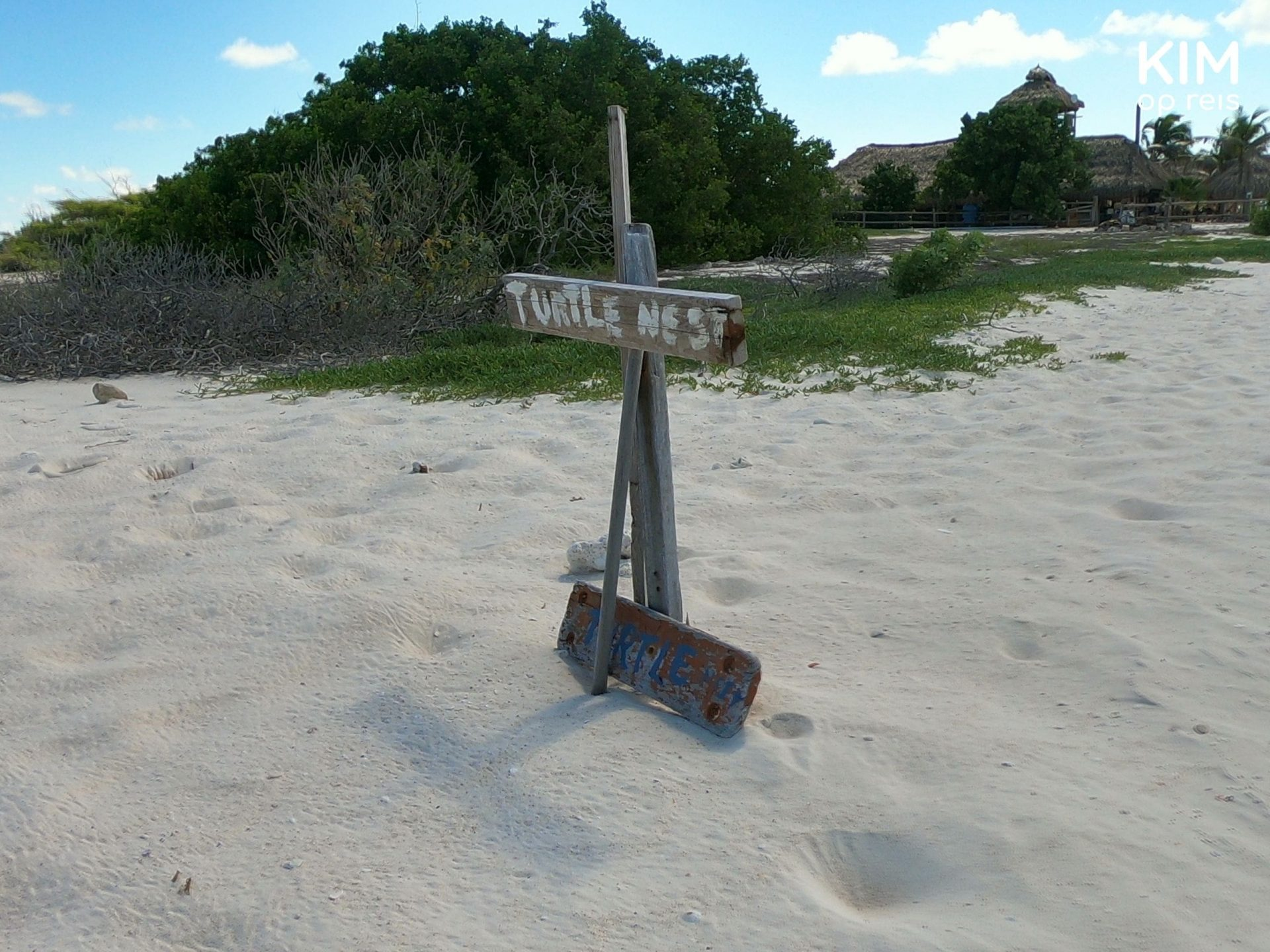 Turtle nest Klein Curaçao: a simple wooden sign marks the nest on the beach