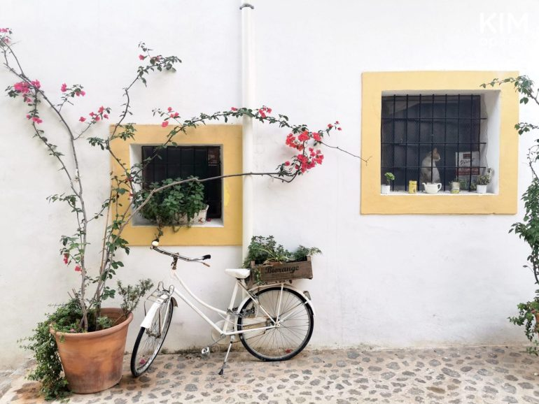 Bike tour Ibiza town - a white house with yellow windows and a large plant with pink flowers and a bicycle in front of it