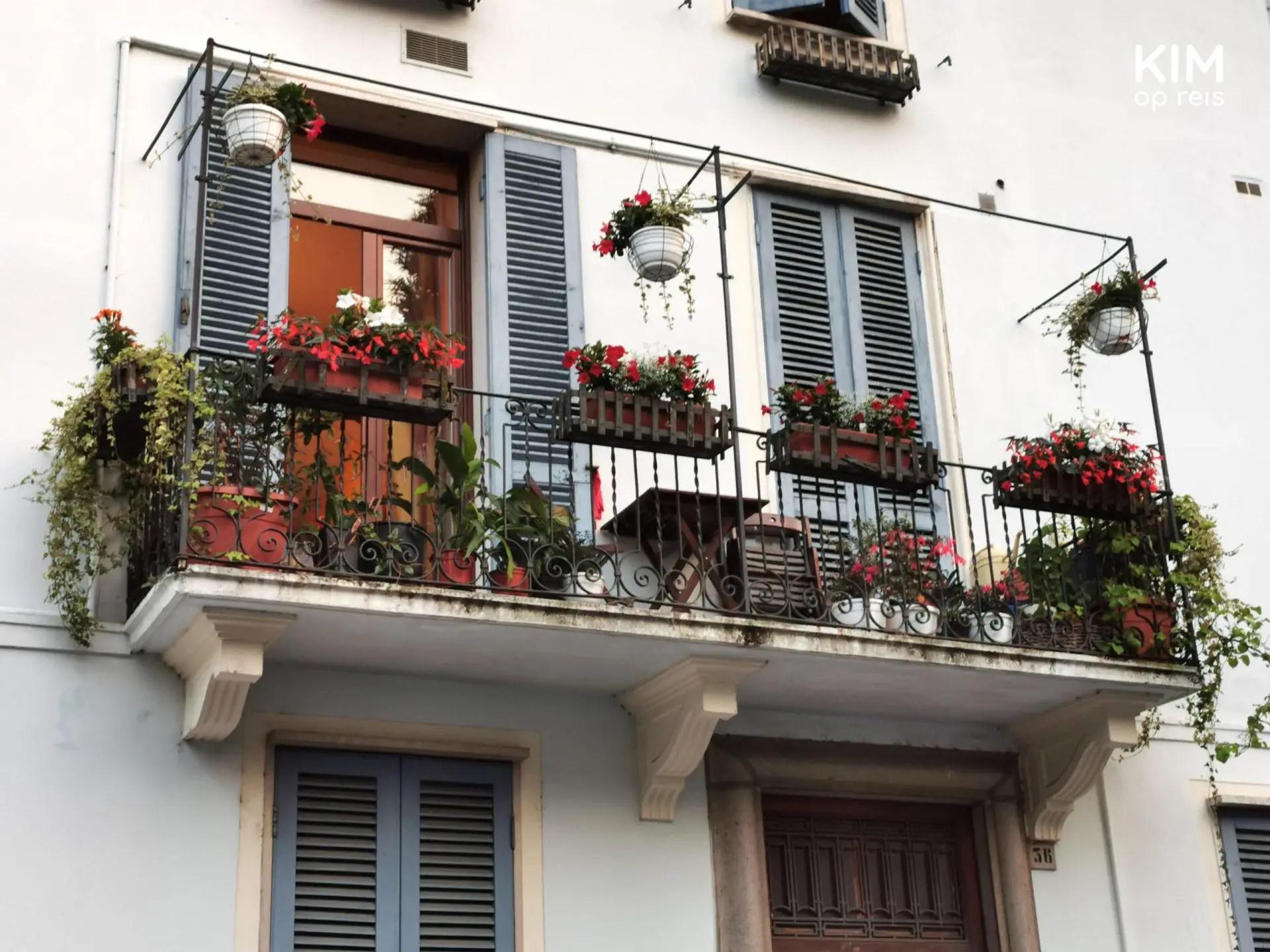 Kleurrijk balkon in Salò - balkon met blauwe klapdeurtjes en veel plantenbakken met bloemen